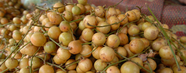 2.Burmese Grape
