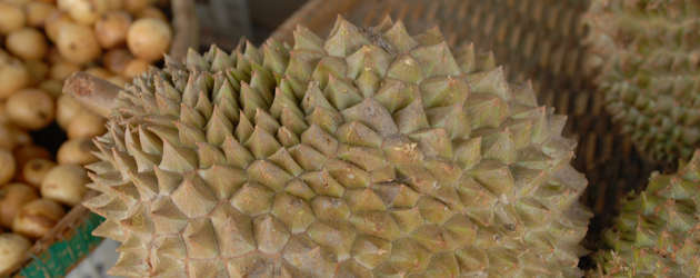28.Durian