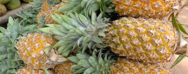 31.Pineapple