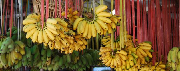 34.Banana