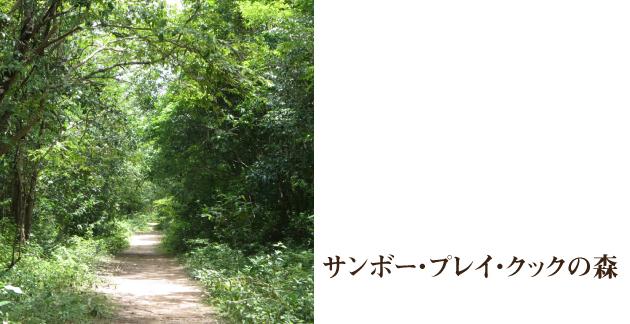 mamoru_web_39_2