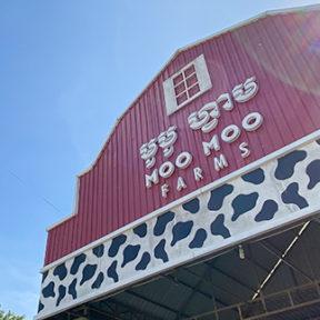 【動画】カンボジア初の酪農農場「モーモーファームズ」